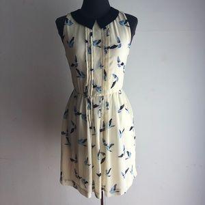Zara sz S peter pan collar bird flare dress